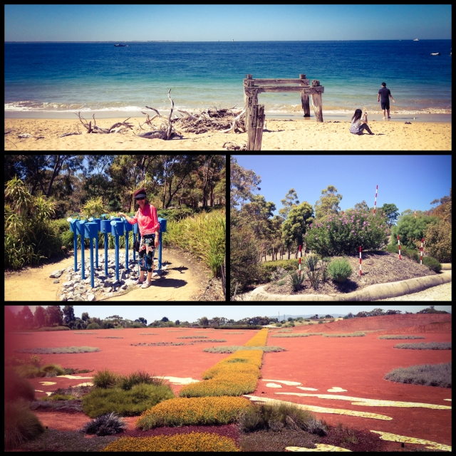 DAY 21 - #100happydays #100happydaysday21 #day21part2 #pointnepeannationalpark #beach  #observatorypoint #royalbotanicgardens #cranbourne #watersaving#garden  #futuregarden #summer #beautifulday #morningtonpeninsula #mum #nomsandrambles #australiangarden #100happyindienomdays